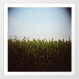 Midwest Field 02, Holga Art Print