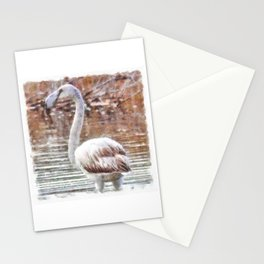 Flamingo Feathers Watercolor Stationery Cards