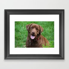 Henry's Waiting Framed Art Print