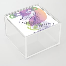 double vision Acrylic Box