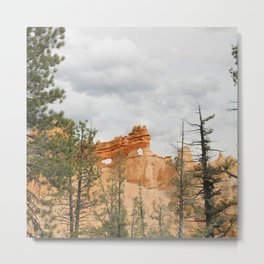 Bryce National Park, hoodoos Metal Print