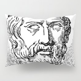 Plato's Cavy - The Allegory of the Cage Pillow Sham