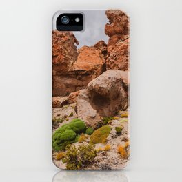 Yareta in Bolivia iPhone Case