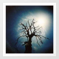 Tree from Holga Art Print