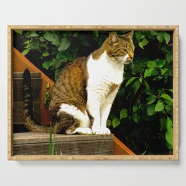 """""""Felis Catus"""" by ICA PAVON Serving Tray"""
