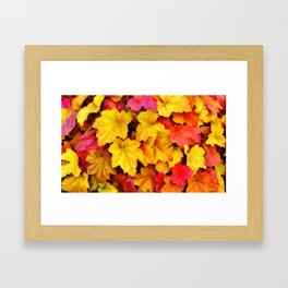 Fallen autumn leaves Framed Art Print
