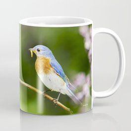 Spring Bluebird Coffee Mug
