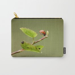 Ladybug Macrosphere Carry-All Pouch