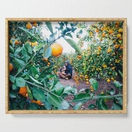 Valencian Orange Grove Serving Tray