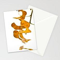 Seedpods Stationery Cards