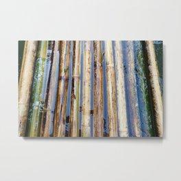 Bamboo Raft Metal Print