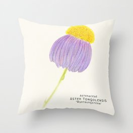 Botanical Sketches 3: East Indies Aster Throw Pillow