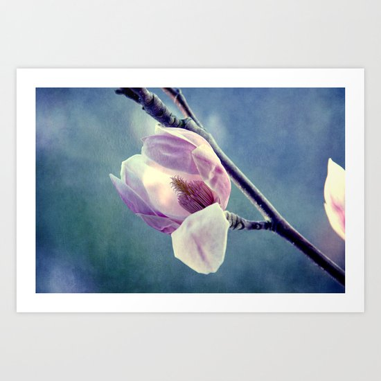 Spring colour Art Print
