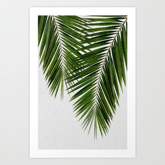 Palm Leaf II by paperpixelprints