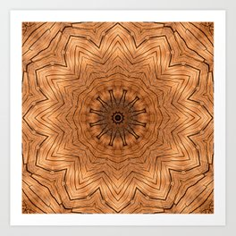 Wooden Flower Ring kaleidoscope Art Print