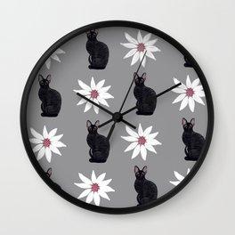 Cornish Rex Cat - Daisy Gray Wall Clock