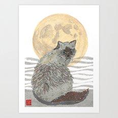 CAT, Moon, Mixed Media Art Print