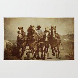 Team Of Horses Rug