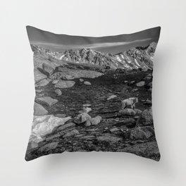 Mountain Goat at Twin Lakes Throw Pillow