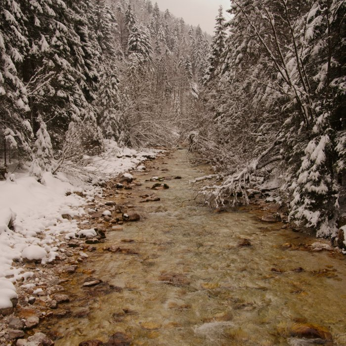 Wintry Sava River At Vrata Valley Comforters