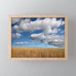 A dramatic Cloudy Sky over a Golden Field Framed Mini Art Print