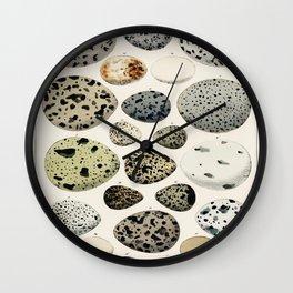 Oken Eggs (1843) by Lorenz Oken Wall Clock