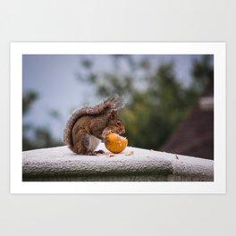 Fruit Thief Art Print