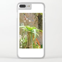 Aloe Plant Clear iPhone Case