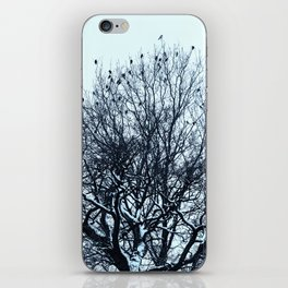 A flock of birds sitting on a tree on a winter day. iPhone Skin