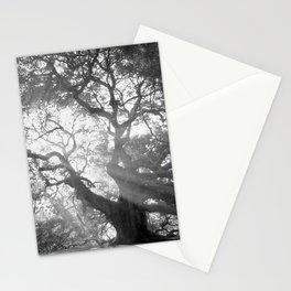 Angel Oak 2 Stationery Cards
