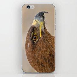 Tawny Eagle 3 iPhone Skin