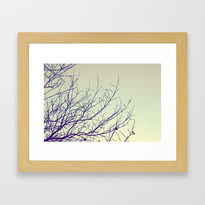 Bare blossoms Framed Art Print