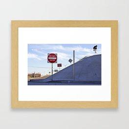 Kickflip In Framed Art Print