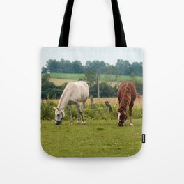Brown and white horse in field Tote Bag