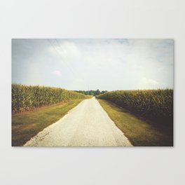 Indiana Corn Field Summers Canvas Print