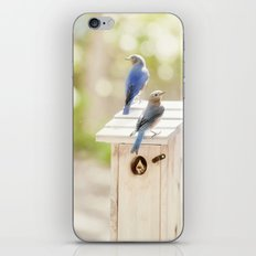 Nurture iPhone & iPod Skin