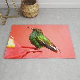 Beautiful Lovely Cute Green Little Kolibri Bird Close Up Ultra HD Rug