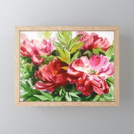 red tree peony, watercolor, sketch from nature Framed Mini Art Print