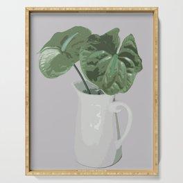 Anthurium in Vase - Green Serving Tray