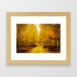 Falls Road Framed Art Print