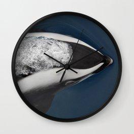Hourglass Dolphin Wall Clock