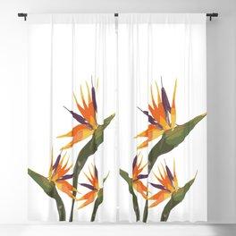 Bird of Paradise Blackout Curtain