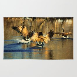 Canadian Geese: Three's a Crowd Rug