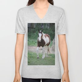 Tennessee Painted Pony Unisex V-Neck