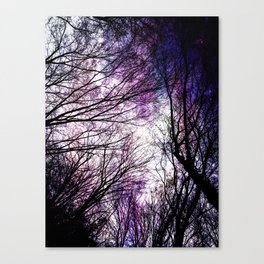starry night in bulgarian wood Canvas Print