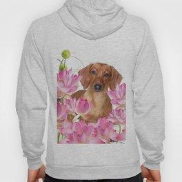 Dog in Field of Lotos Flower Hoody
