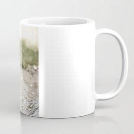 Startled Coffee Mug