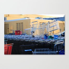 Grocery carts Canvas Print
