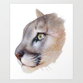Ares Cougar Art Print