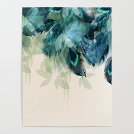 Beautiful Peacock Feathers Poster